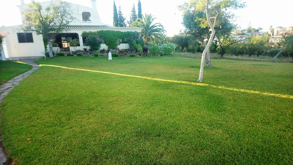 Lawn in Front of Studio Casa Solandra